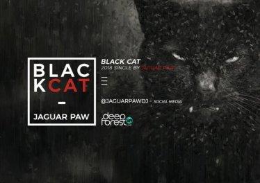 Jaguar Paw - Black Cat (Original Mix)