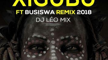 DJ Léo Mix - Xigubu (Remix)