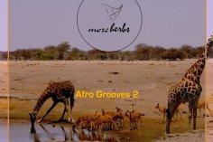 VA Afro Grooves 2