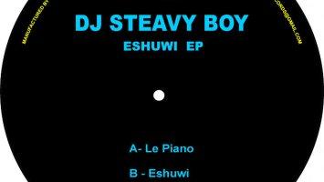DJ Steavy Boy - Le Piano (Original Mix)