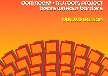Domineeky & Tru Roots Project - Soweto Groove (Original Mix)