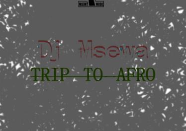 Dj Msewa - Trip To Afro (Original Mix)