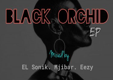 Eazy, El Sonik & Mjibar - Black Orchid-Dark City (Original Mix)