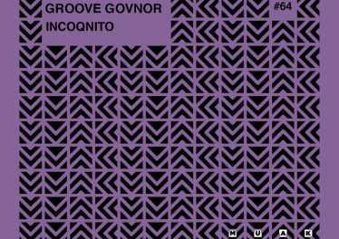Groove Govnor - Incoqnito (Original Mix)