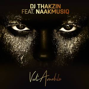 DJ Thakzin - Vul'Amehlo (feat. NaakMusiQ). new afro house 2018, new south african afro house music, download afro house songs, latest sa afro deep house music