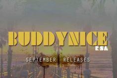 Buddynice feat. Epic Soulstar - Emotions (Original Mix)