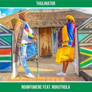 Thulinator feat  Nokuthula - Ngimfumene (Original Mix) Download MP3