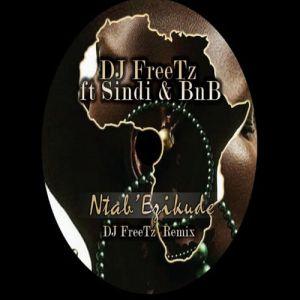 DJ Freetz feat. Sindi & BNB - Ntab' Ezikude (DJ FreeTz Remix), new south africa house music, sa afro house 2018