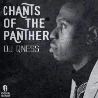 DJ Qness feat. Zizipho Ngwenya - Bambelela (Original Mix)