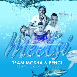 Team Mosha & Pencil - Meetsi (feat. Calvin Fallo), mzansi music, amapiano house, south african afro house music 2018 download mp3
