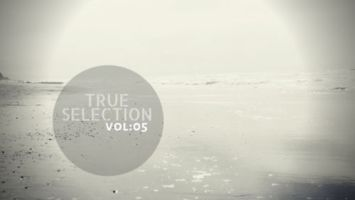 VA - True Selection Vol.05