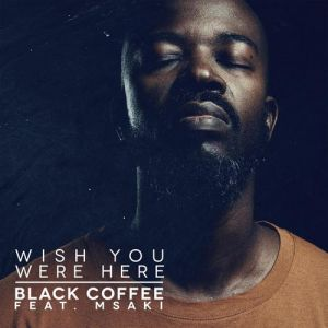 Black Coffee - Wish You Were Here (feat. Msaki)