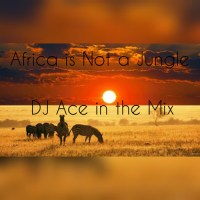 DJ Ace - Africa is Not a Jungle Mix