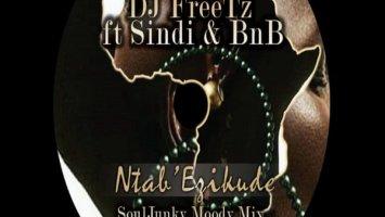 DJ Freetz - Ntab' Ezikude (SoulJunky Moody Remix)