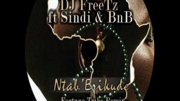 DJ FreeTz - Ntab' Ezikude (Fortune Tribe Remix)