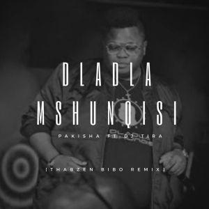 Dladla Mshunqisi - Pakisha (Thabzen Bibo Remix)