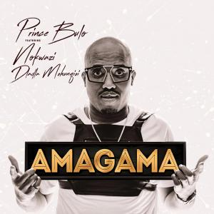 Prince Bulu ft. Nokwazi & Dladla Mshuqisi - Amagama (Pastor Snow Afro Mix)
