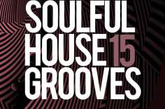 VA Soulful House Grooves, Vol. 15