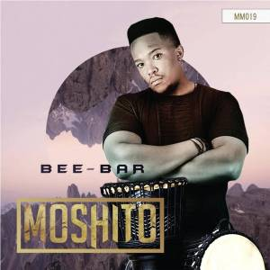 Bee Bar feat. Komplexity - Total Strangers (Just Bee U Mix), south african house music, new afro house music, download latest house music, afrohouse, afro music