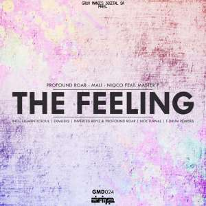 Profound Roar, Mali, Niqco & Master P - The Feeling (Nocturnal's Chilled Mix), soulful house 2019, deep house music download, afro deep soulful mp3 download
