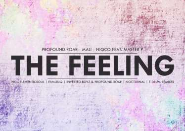 Profound Roar, Mali, Niqco & Master P - The Feeling (The Remixes), soulful house 2019, deep house music download, afro deep soulful mp3 download