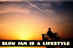 DJ Ace - Slow Jam Is A LifeStyle (AmaPiano Mix)
