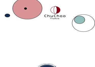 Thamza - Chuchoo (Original Mix)