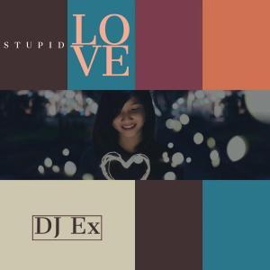DJ Ex - Stupid Love (Original Mix)