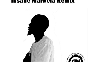 Irie Drums - The Light (Insane Malwela Remix)