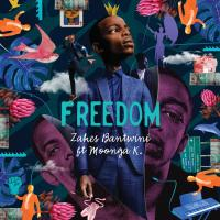 Zakes Bantwini, Moonga K - Freedom (Benediction SA Remix)