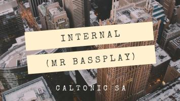 Caltonic SA - Internal (Mr Bassplay), new amapiano music, amapiano songs, latest sa amapiano, amapiano 2019 download
