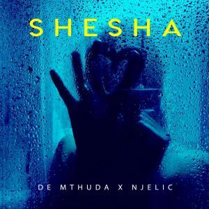 De Mthuda & Njelic - Shesha