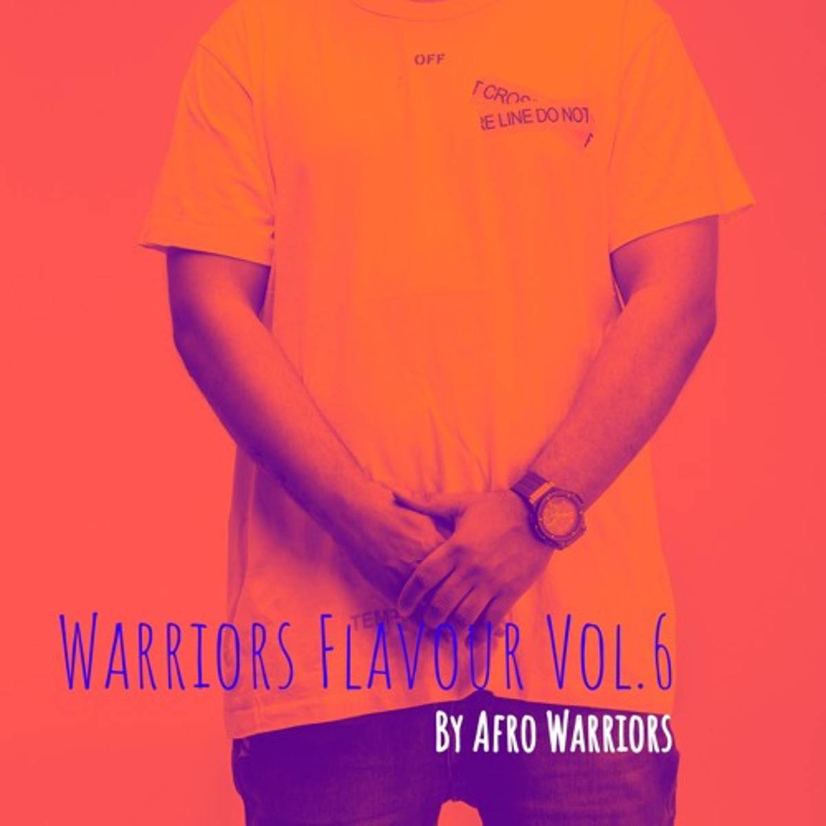 Afro Warriors Warriors Flavour Vol.6 - Afro Warriors – Warriors Flavour Vol.6 (Afro House Edition)