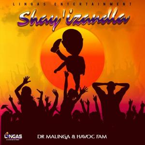 Dr Malinga & Havoc Fam - Shay'izandla, new gqom music, gqom 2019 download, gqom mp3 download, gqom songs, new sa music, za music, south african gqom audio