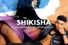 Zulu Mkhathini - Shikisha (feat. Moonchild Sanelly)