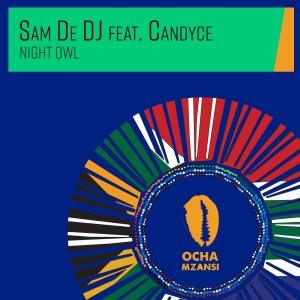 Sam De DJ, Candyce - Night Owl (Original Mix)