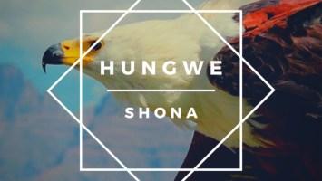 Shona (SA) feat. Zimkitha - Ndiyekele