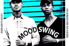 Skyzo - Mood Swing (Original Mix)