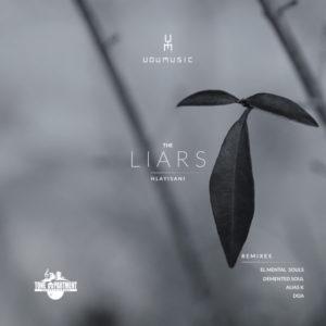 Udumusic, Hlayisani - The Liars (Demented Soul Imp5 Afro Mix)