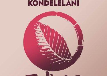 Vanco, Mavhungu - Kondelelani (Afro Brotherz Spirit Remix)