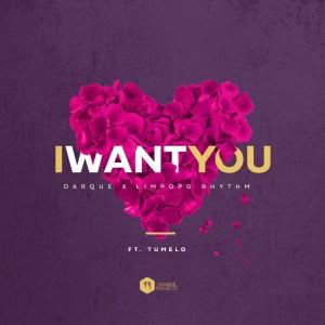 Darque & Limpopo Rhythm - I Want You (feat. Tumelo)