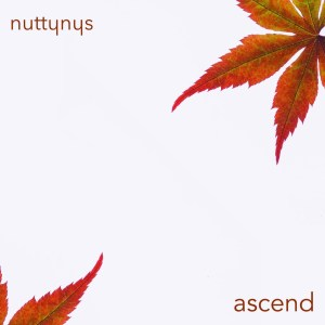 Nutty Nys - Ascend