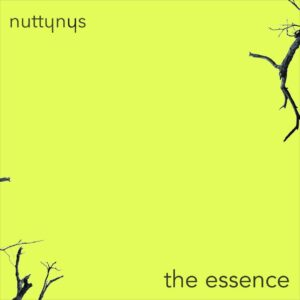 Nutty Nys - The Essence