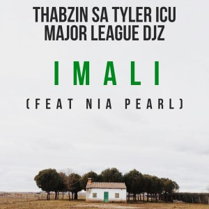 Thabzin SA, Tyler ICU & Major League - Imali (feat. Nia Pearl)