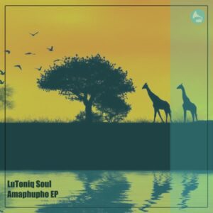 LuToniq Soul - Amaphupho EP
