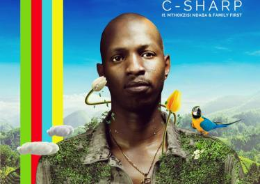 C-Sharp, Mthokozisi Ndaba, Family First - Rainbow (Original Mix)