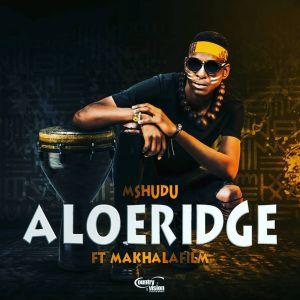Mshudu - Aloeridge (feat. Makhalafilm)