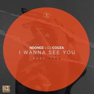 Ndondz & DJ Couza feat. Fako - Wanna See you (Original Mix)