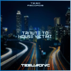 Tebu.Sonic - Tribute to House Victimz