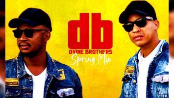 Dvine Brothers - Spring Mix 2020
